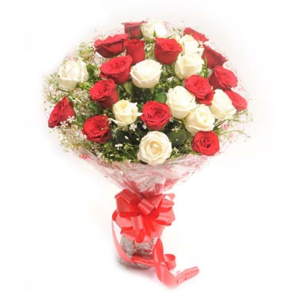 20 Red And White Roses